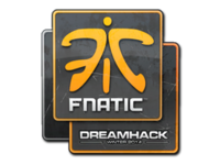Csgo-dreamhack2014-fnatic large
