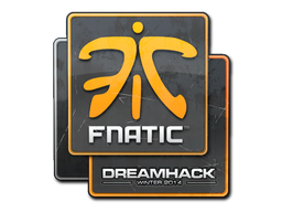 File:Csgo-dreamhack2014-fnatic large.png