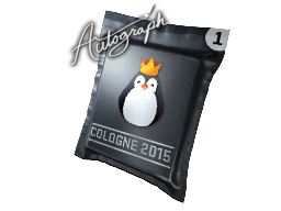 File:Csgo-cologne2015 kinguin.png