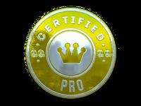 Csgo-stickers-team roles capsule-pro foil pw