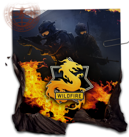File:Csgo-opwildfire-journal.png