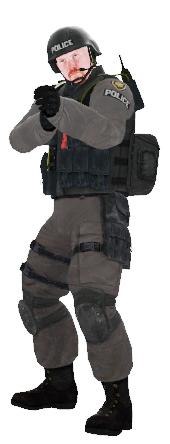 File:Ctm swat variantd.png