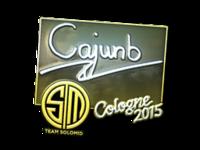 Csgo-col2015-sig cajunb foil large