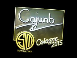 File:Csgo-col2015-sig cajunb foil large.png