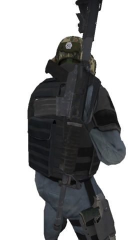 File:P m4a1s back.png