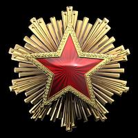 Csgo-service medal 2016 6