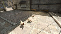 Cs italy chicken csgo