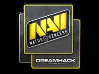 Csgo-dreamhack2014-navi large