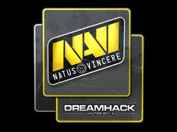 File:Csgo-dreamhack2014-navi large.png