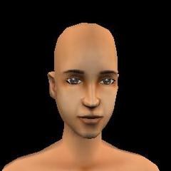 Adult Female - 13 Archecer