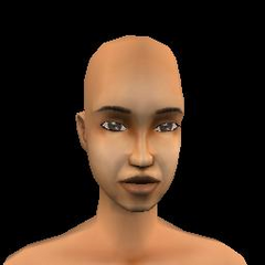 Adult Female - 09 Archcino