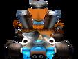 CTR N. Tropy In-Kart (Back)