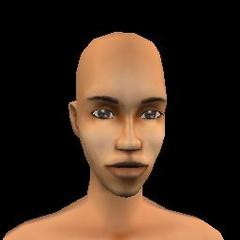 Adult Female - 06 Archcmas