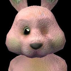 Social Bunny (2) BV