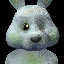 Social Bunny (3) BV