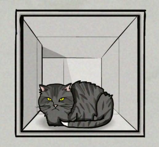 File:CatCase23(2).png