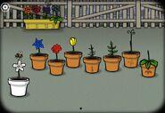 FlowerBreeding