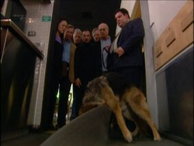 The-corpse-sniffing-dog-picture