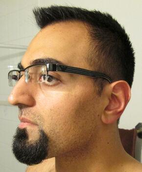 Ham beard7
