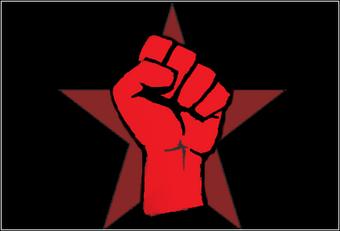 MRA Flag
