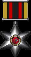 Medal military s