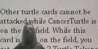 CancerTurtle