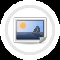File:PL Wiki InM ikona.png
