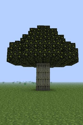 File:Walnut Tree.png