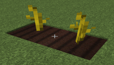 File:Pumpkin Stems.png