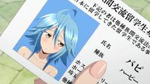AnimePapi3