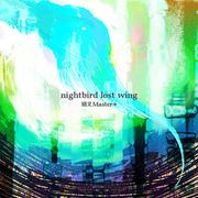 Nightbird lost wing