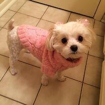 Maliboo pink sweater and nail polish Feb2015