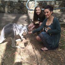 Maddie Gianna kangaroo 2015-03-17