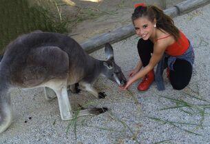 Mackenzie kangaroo