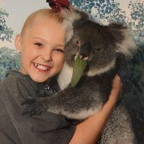 JoJo koala 2015-03-17