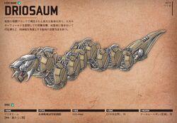 Driosaum