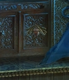 Acorn Symbol Black Swan's Room