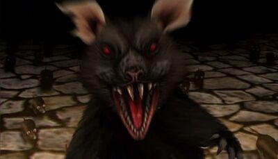 Fl rat attack