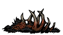 Beast carcass