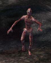 Zombie Shambler