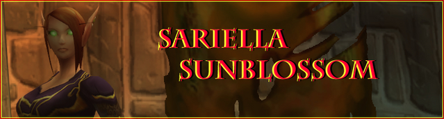 File:Sar234234234i Banner.png
