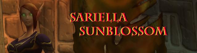 File:Sari Banner.png