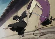 Rukia vs Yoshi