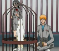 Ichigo, Rukia, Juice, and Bird