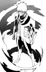 Ichigo's Complete Fullbring