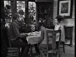 DarkShadows132