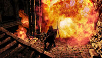 Dark Souls II Gameplay06