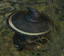 Big hat logan firelink