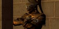 Darkmoon Knightess