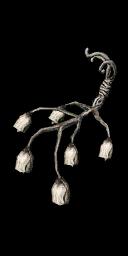 Witchtree Bellvine